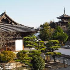奈良での初詣 &臨時のお休みについて