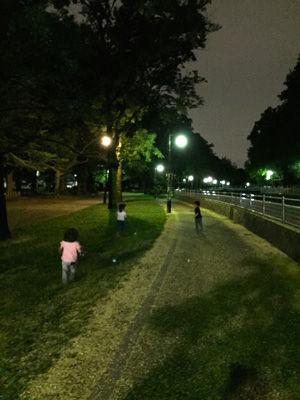IMG_6985park.jpg
