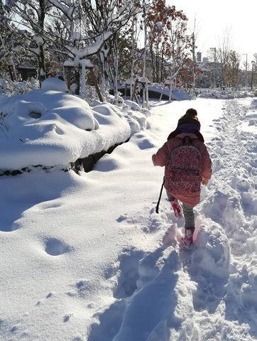 IMG_20180123_snowscenery.jpg