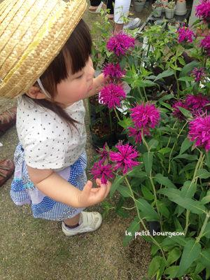IMG_2488flowers.jpg