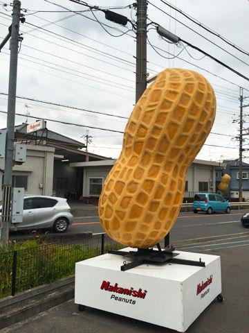 IMG_0546nakanishi-peanuts.jpg