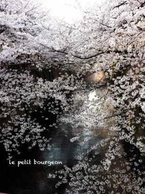 IMG_4612目黒川