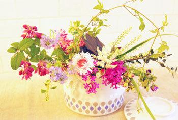 IMGP6112花の会リンビュー