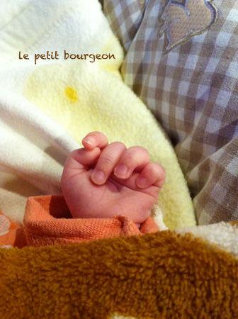 IMG_3684赤ちゃんの手