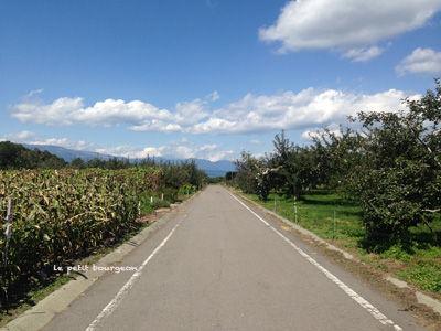 北軽井沢農園